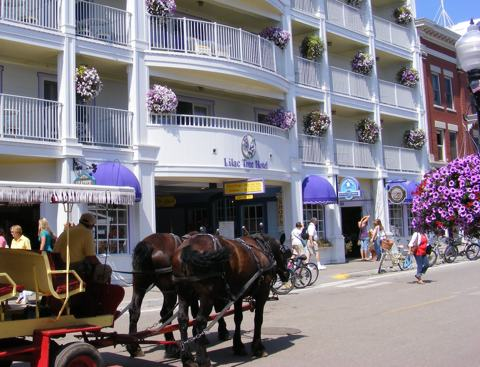 The Lilac Tree Hotel on Main Street in the                village. A horse-drawn carriage approaches from                 the left. Bicycles are parked at the curb.